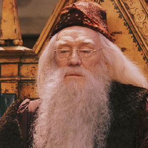 Harry Potter - Dumbledore 2