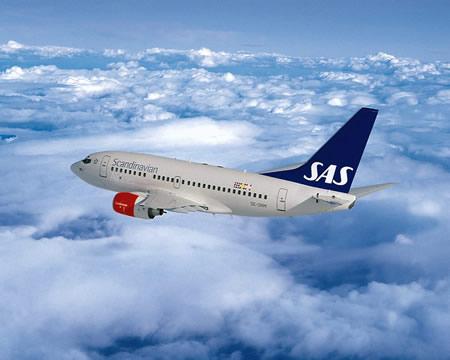 SAS.jpg